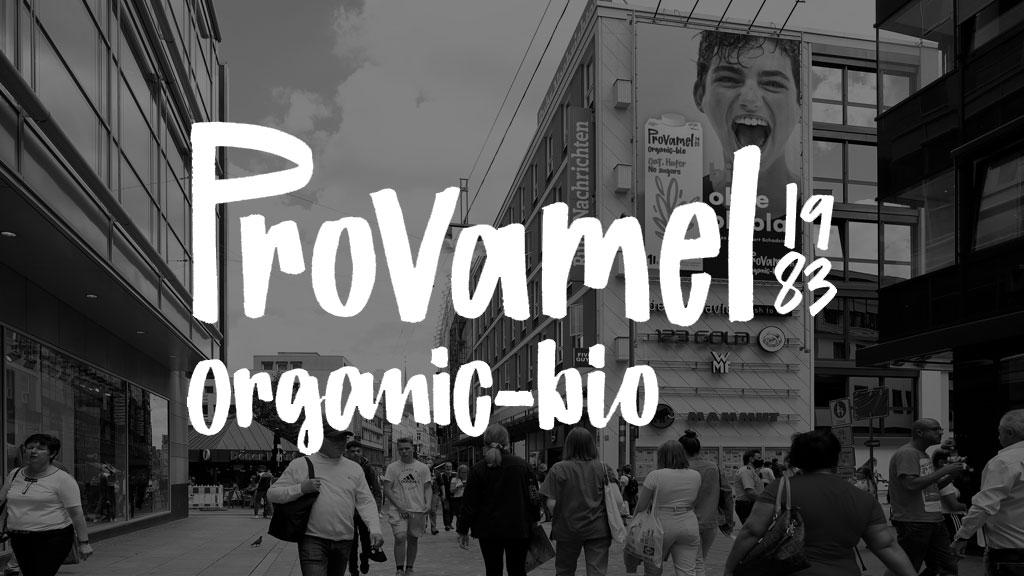 Logo Promavel